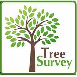 PSHB Tree Survey Logo Framed