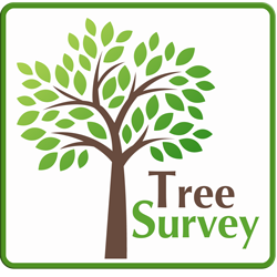 PSHB Tree Survey Logo Framed