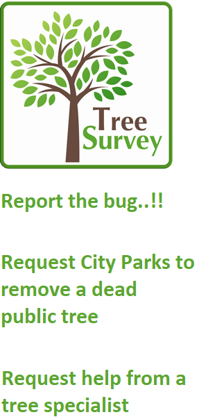 Tree Survey - Action against PSHB