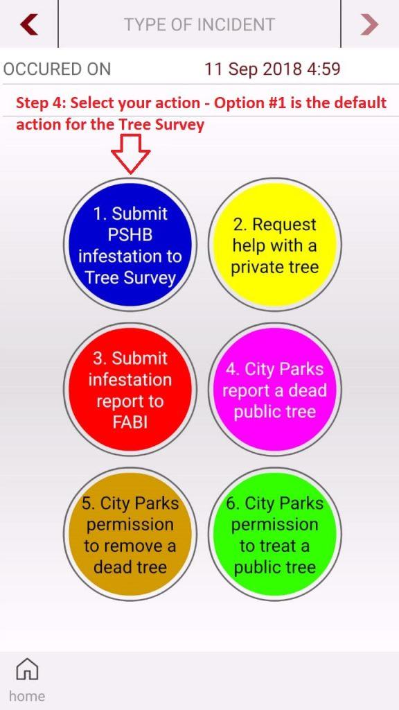 PSHB - TreeSurvey - Step 04