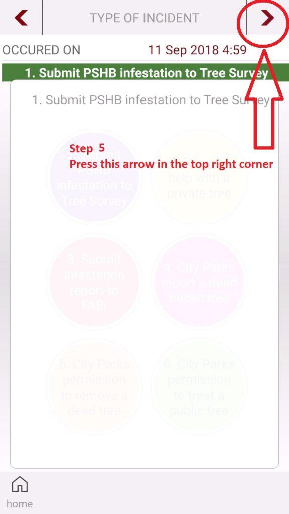 PSHB - TreeSurvey - Step 05