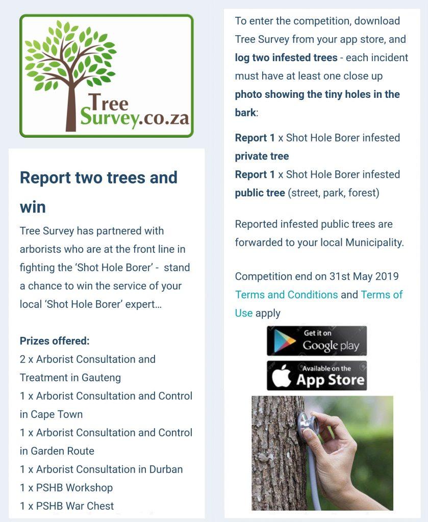 TreeSurvey - Shot Hole Borer competition - May 2019
